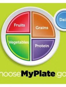 myplate1 228x300 - My plate : Όλα όσα θέλετε να ξέρετε για το πιάτο σας!