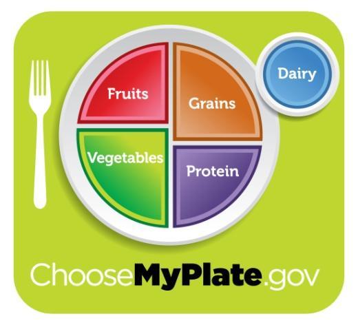 myplate1 - My plate : Όλα όσα θέλετε να ξέρετε για το πιάτο σας!